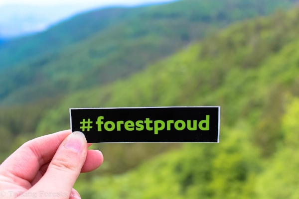 #forestproud in the Black Forest, Germany