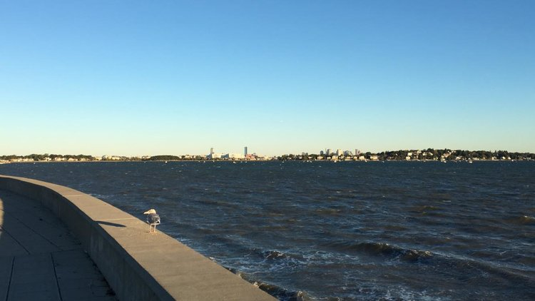 The City of Quincy features 27 miles of coastline and many scenic views of the Boston Skyline.