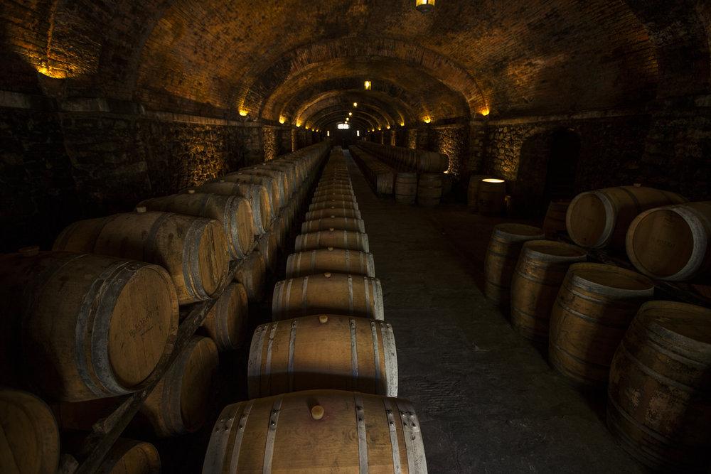 Cellar (7).jpg