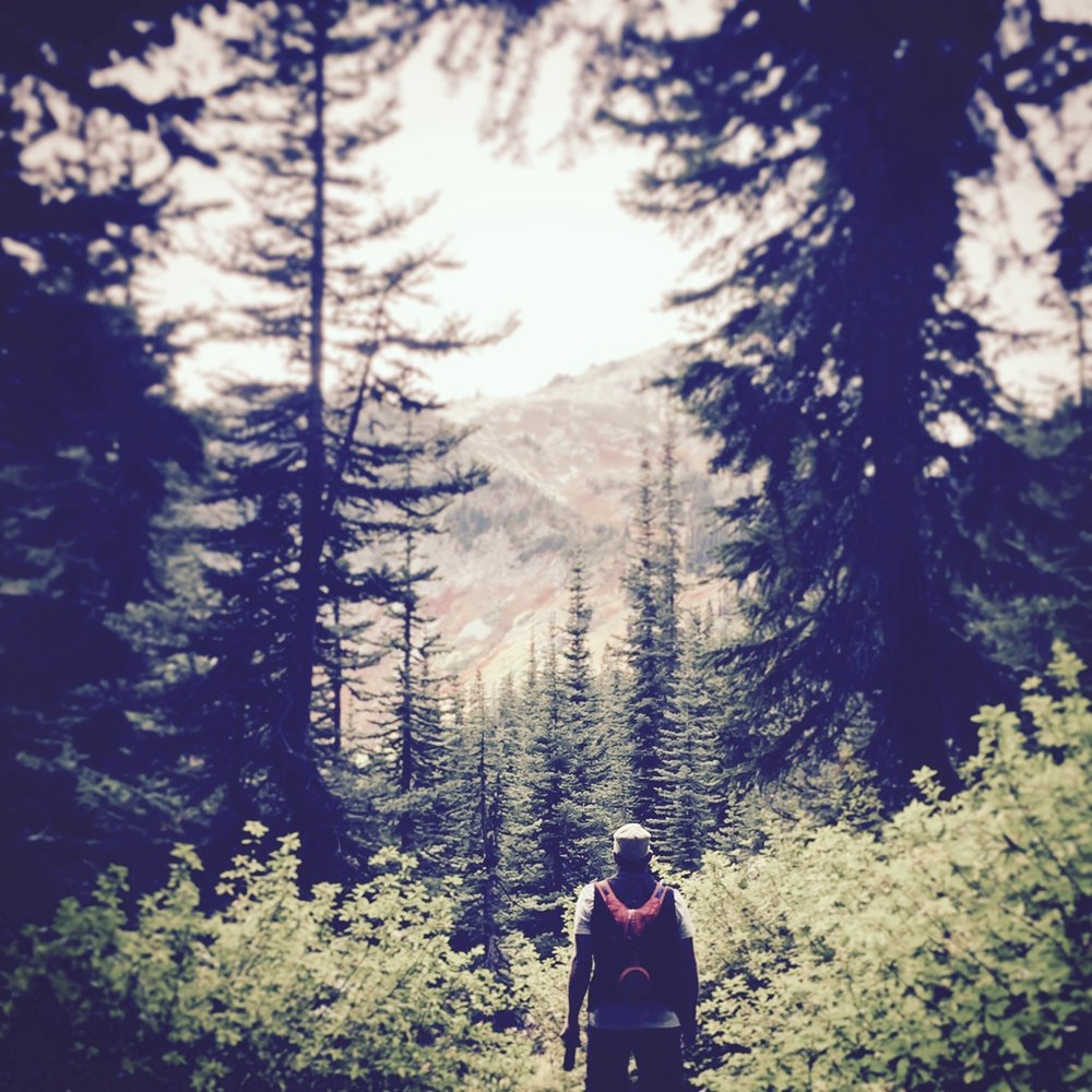 Hiking in the Pacific Northwest