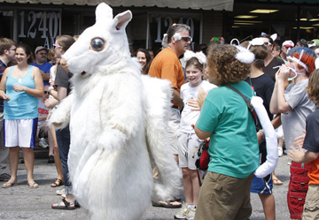 white-squirrel-festival-brevard-nc.jpg