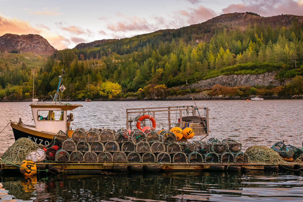 Shrimp boats at Loch Carron in Plockton