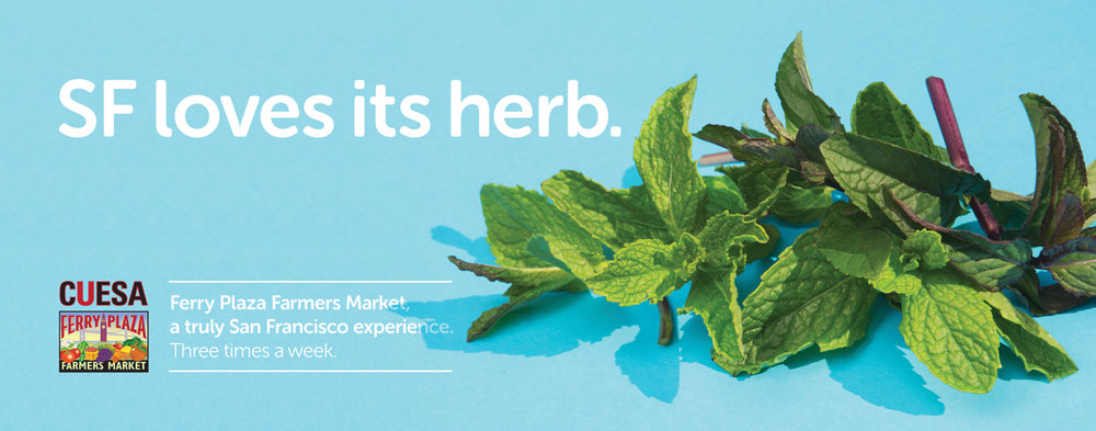 cue02b_businterior_herb.jpg