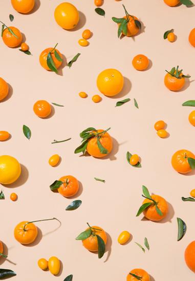 citrus-stilllifealo.jpg