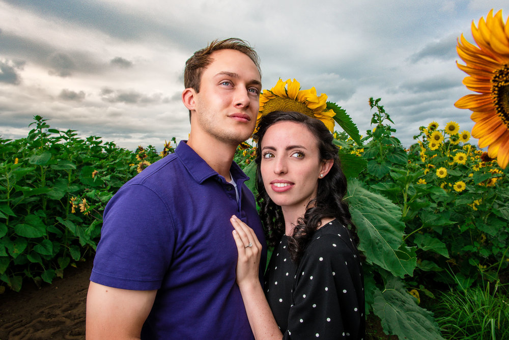 Sunflower farm engagement shoot _ Johnson's Locust Hall Farm _ Jobstown NJ-9.jpg