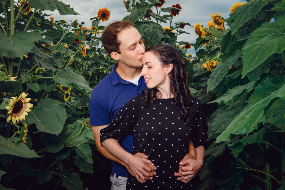Sunflower farm engagement shoot _ Johnson's Locust Hall Farm _ Jobstown NJ-14.jpg