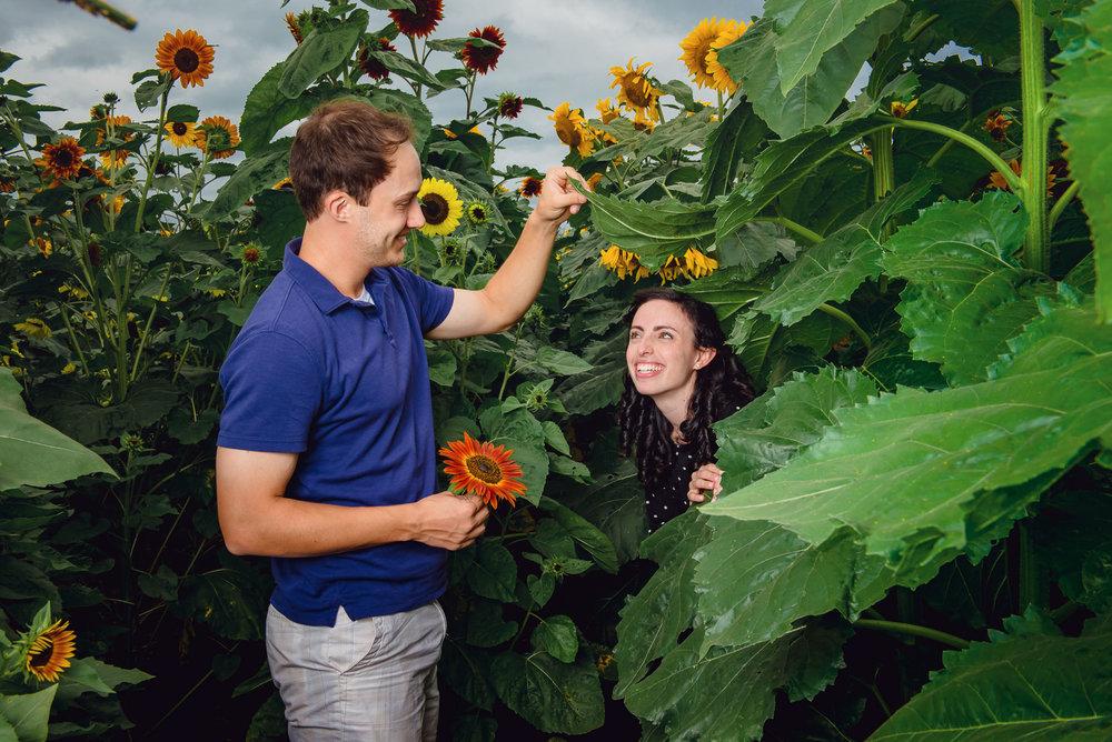 Sunflower farm engagement shoot _ Johnson's Locust Hall Farm _ Jobstown NJ-16.jpg