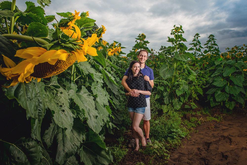 Sunflower farm engagement shoot _ Johnson's Locust Hall Farm _ Jobstown NJ-18.jpg