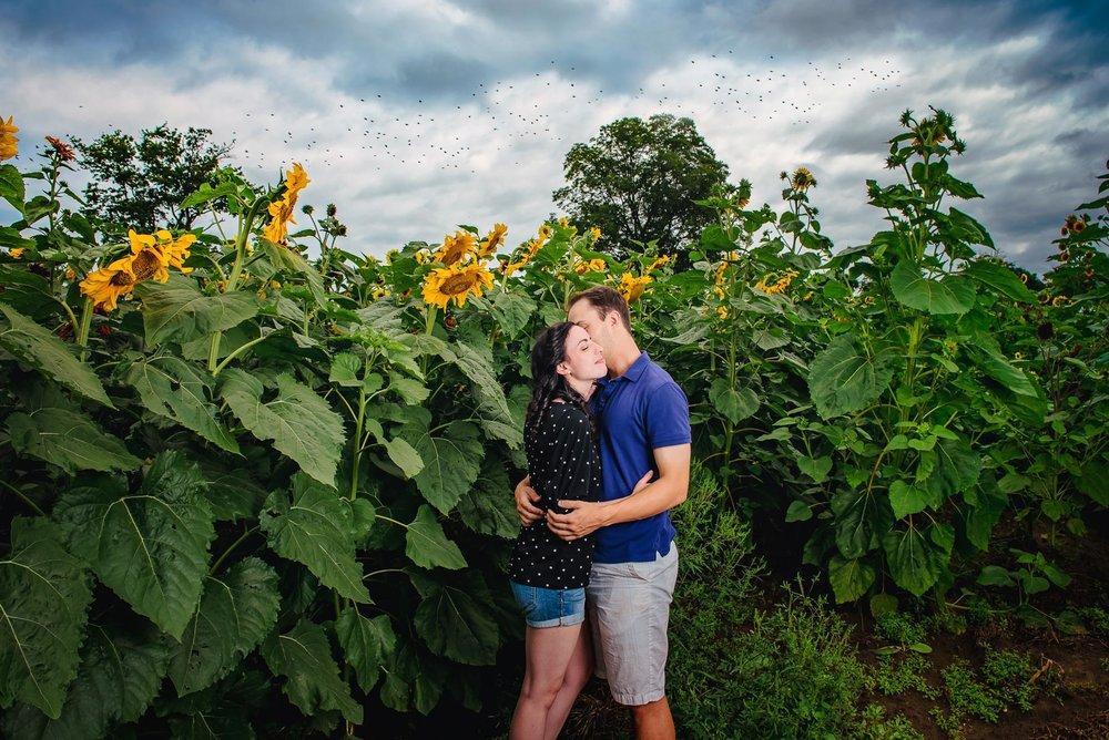 Sunflower farm engagement shoot _ Johnson's Locust Hall Farm _ Jobstown NJ-19.jpg