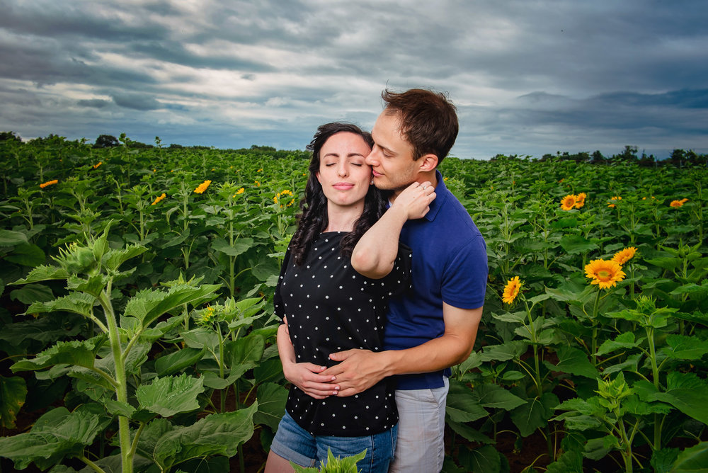 Sunflower farm engagement shoot _ Johnson's Locust Hall Farm _ Jobstown NJ-20.jpg