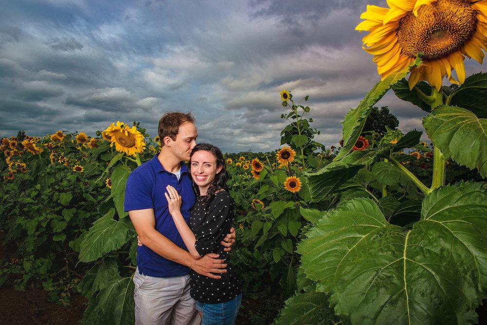 NJ engagement photographer sunflower farm shoot jobstown NJ.jpg