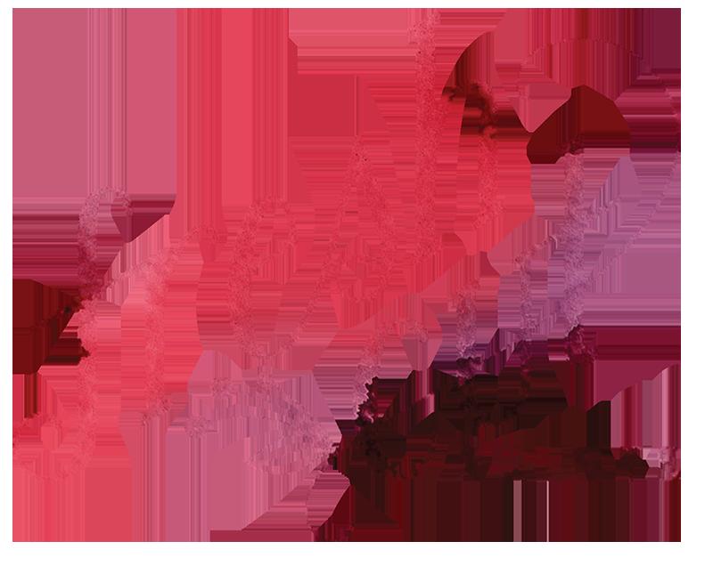 freshcutlogoandcolors_medium.png