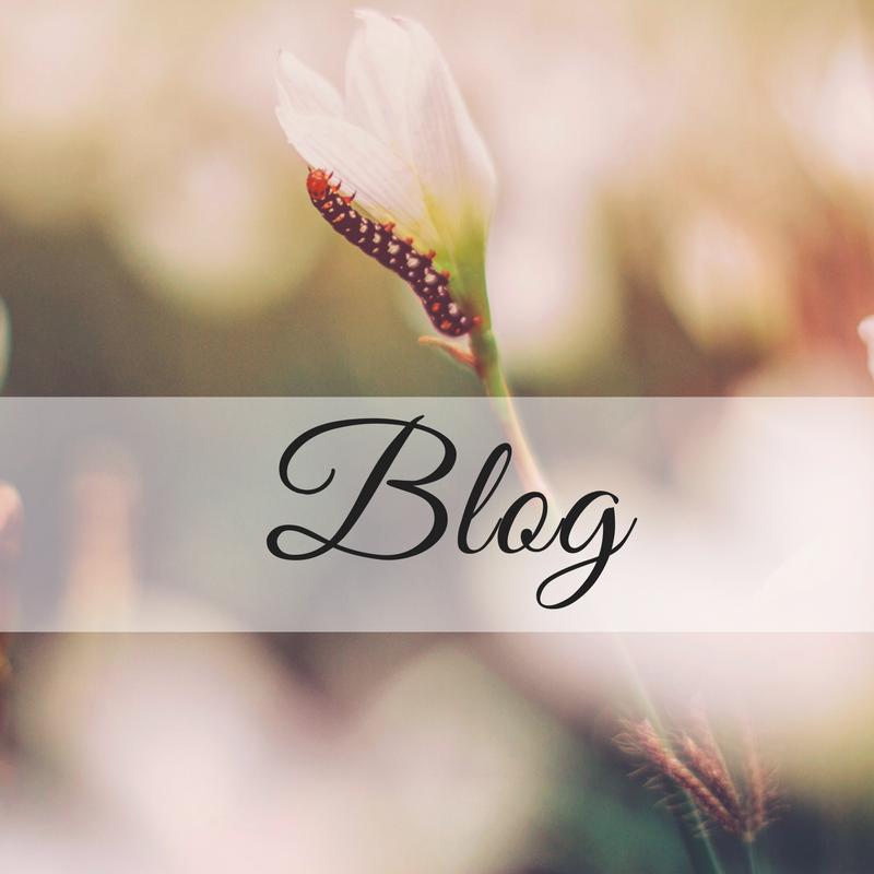Blog Pink.png