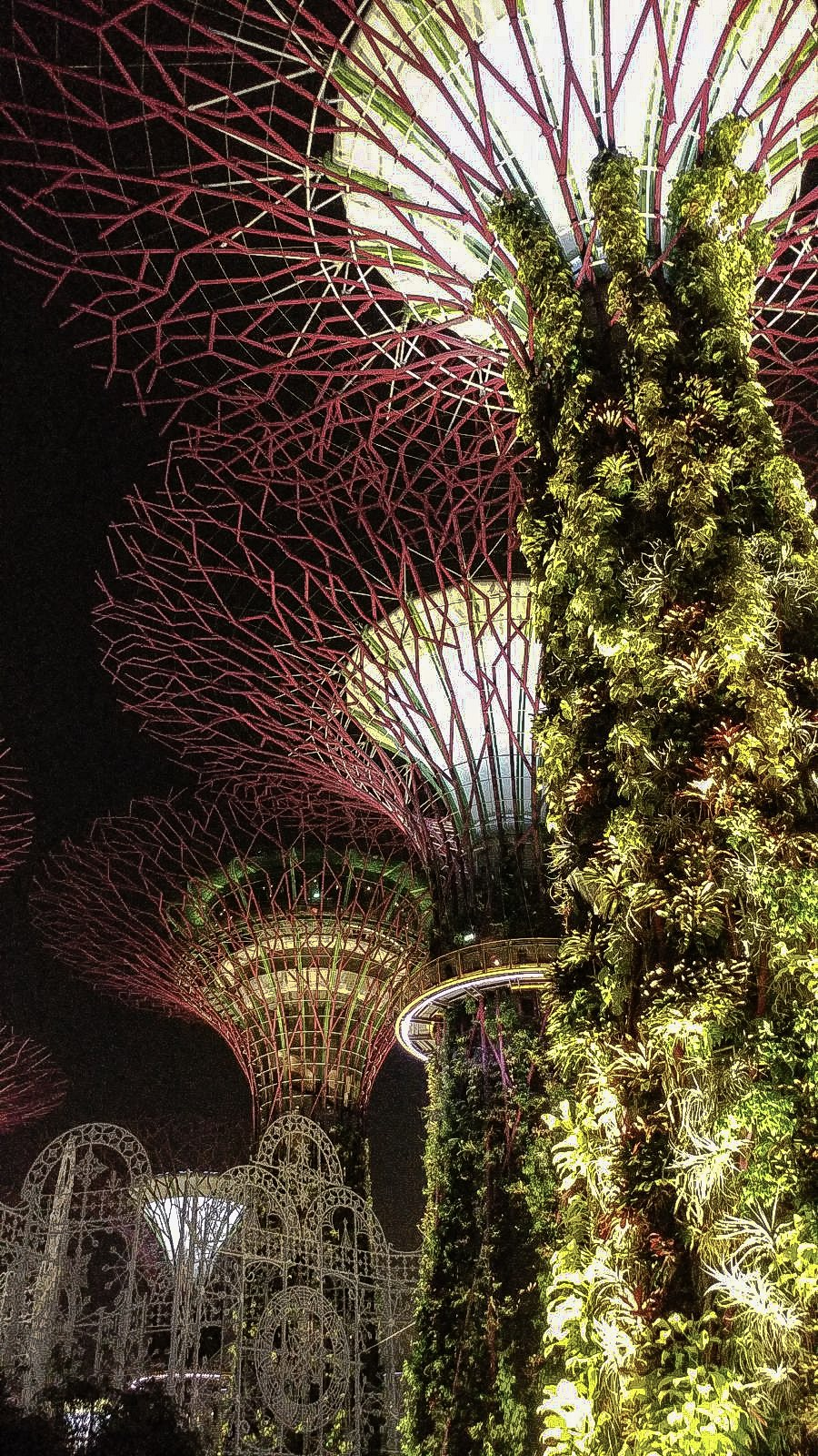 Supertree Grove. Singapore.