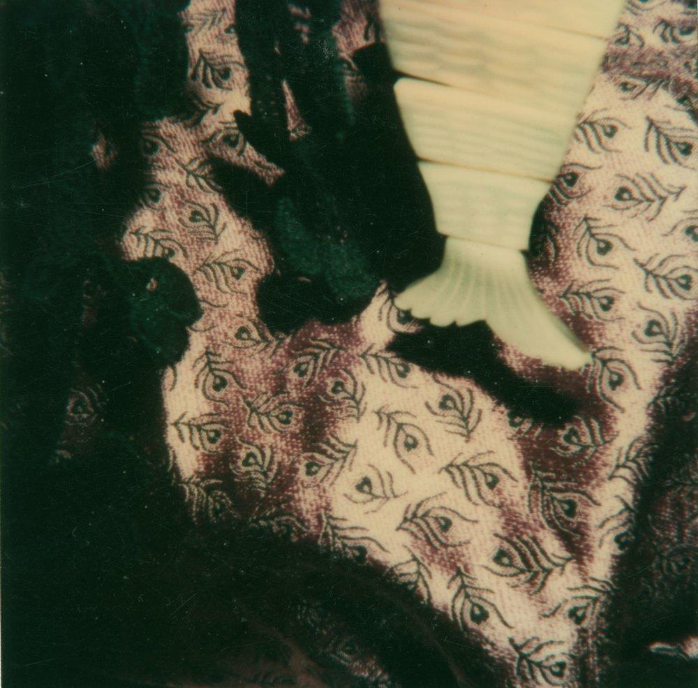 Polaroid 3, 1981-83