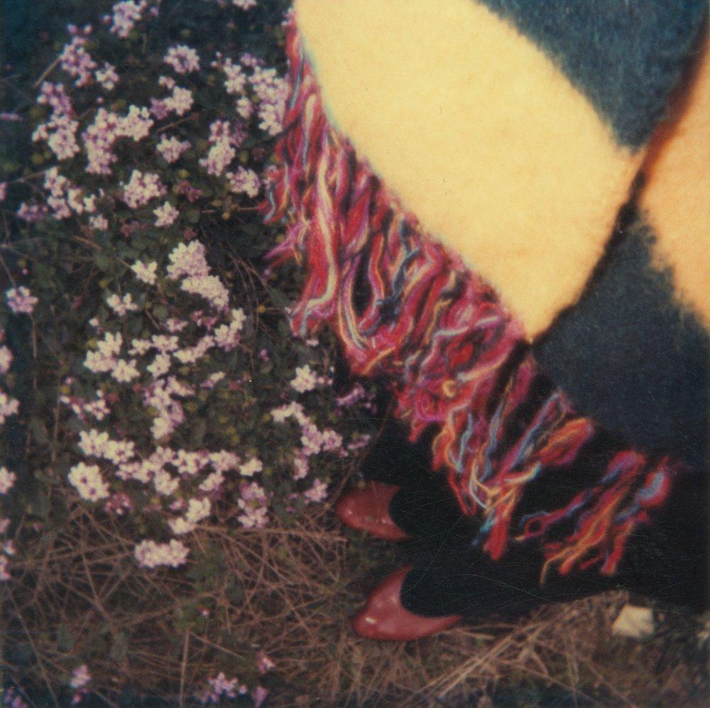Polaroid 4, 1981-83