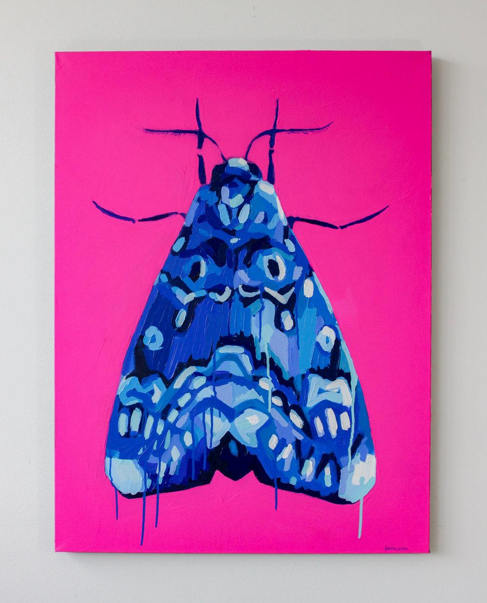 "Lily Moth  30""x40""  acrylic on canvas"