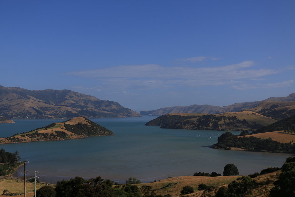 Luxury private tours Akaroa