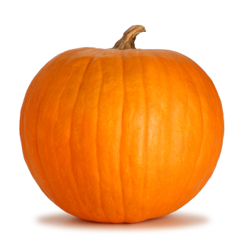 Pumpkin Enzymes