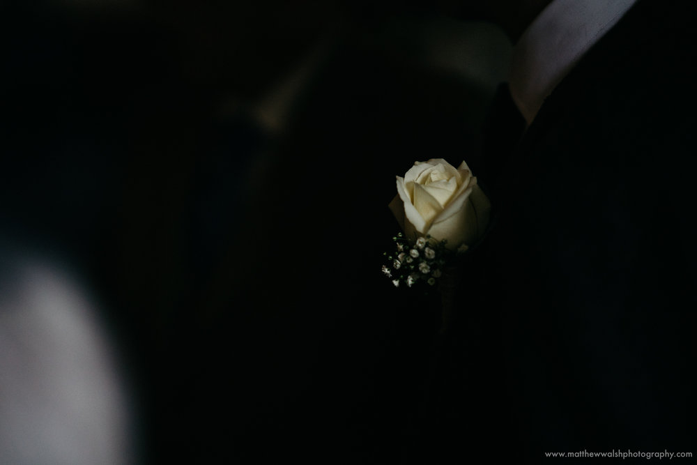 Sometimes it all about capturing the small details of the flowers, the darkness framing the flower