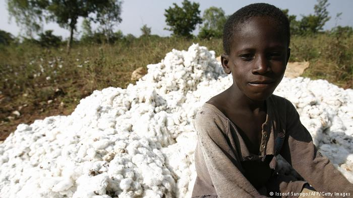 Cotton-picking is done by children all over the world, but particularly in countries whose economies rely heavily on its harvest - like in Ivory Coast.