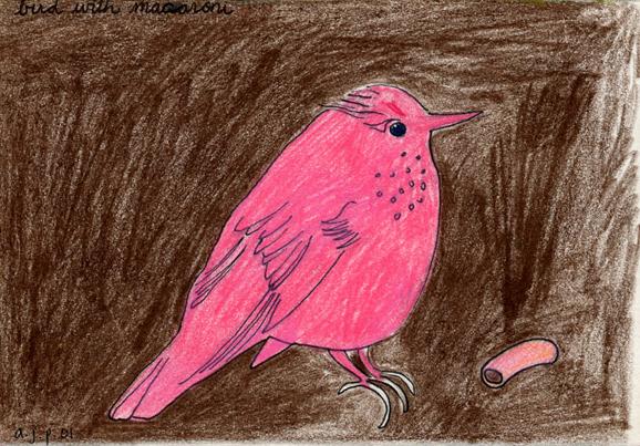 Bird with Macaroni