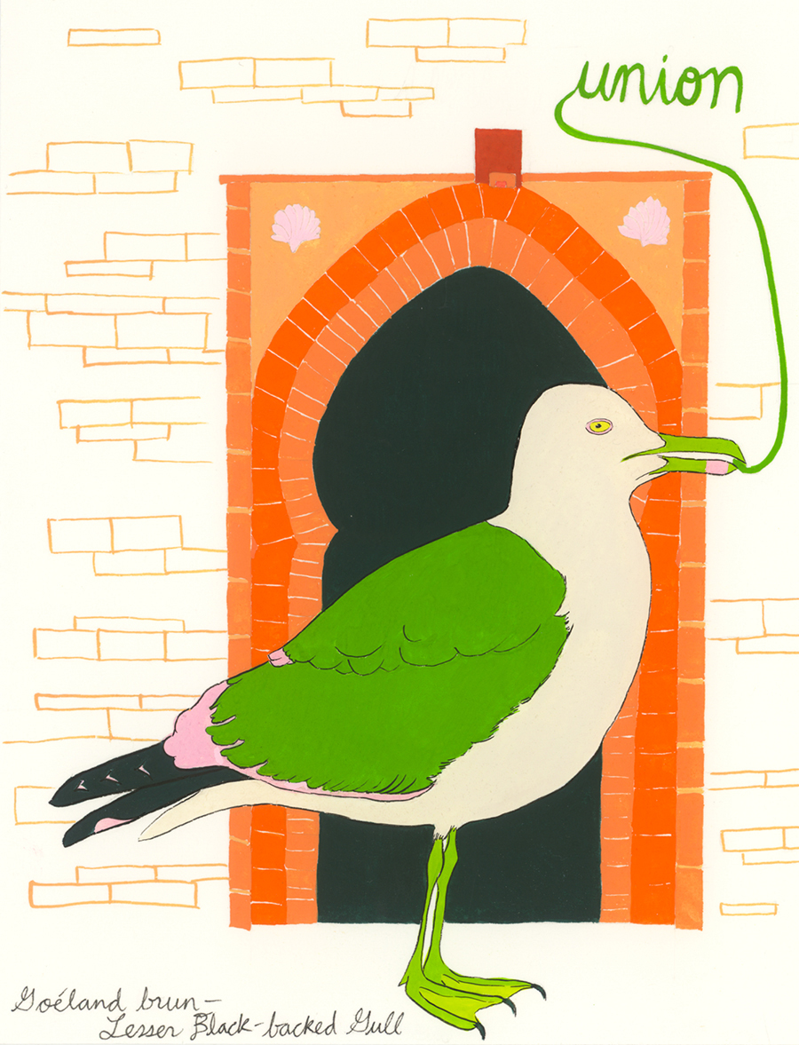 Union , from the series of 358  Birds of North Africa Speak French and English Both at Once , 2005, gouache and ink on Arches paper