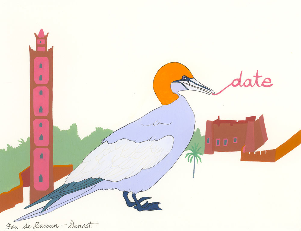 Date , from the series of 358  Birds of North Africa Speak French and English Both at Once , 2005, gouache and ink on Arches paper