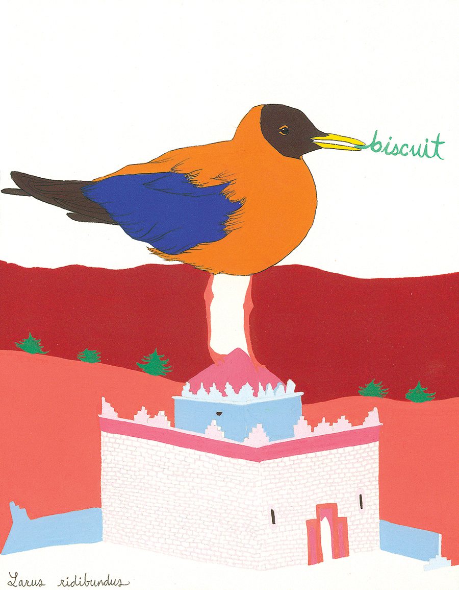 Biscuit , from the series of 358  Birds of North Africa Speak French and English Both at Once , 2005, gouache and ink on Arches paper