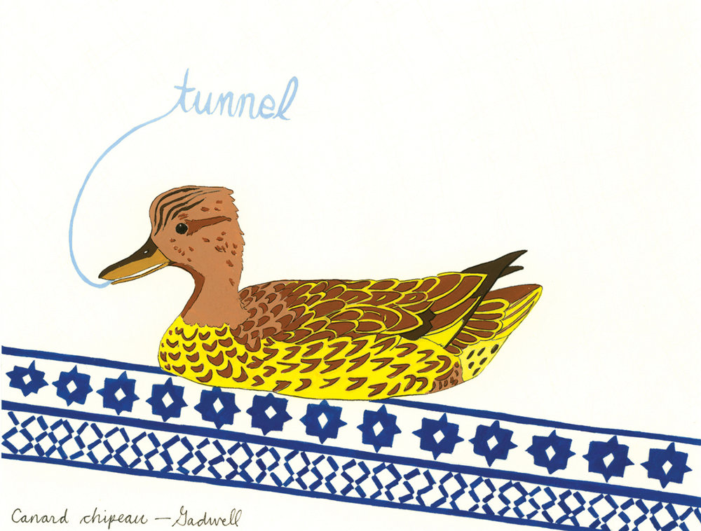 Tunnel , from the series of 358  Birds of North Africa Speak French and English Both at Once , 2005, gouache and ink on Arches paper