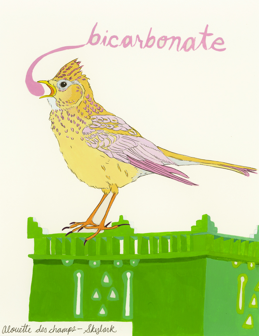 Bicarbonate , from the series of 358  Birds of North Africa Speak French and English Both at Once , 2005, gouache and ink on Arches paper