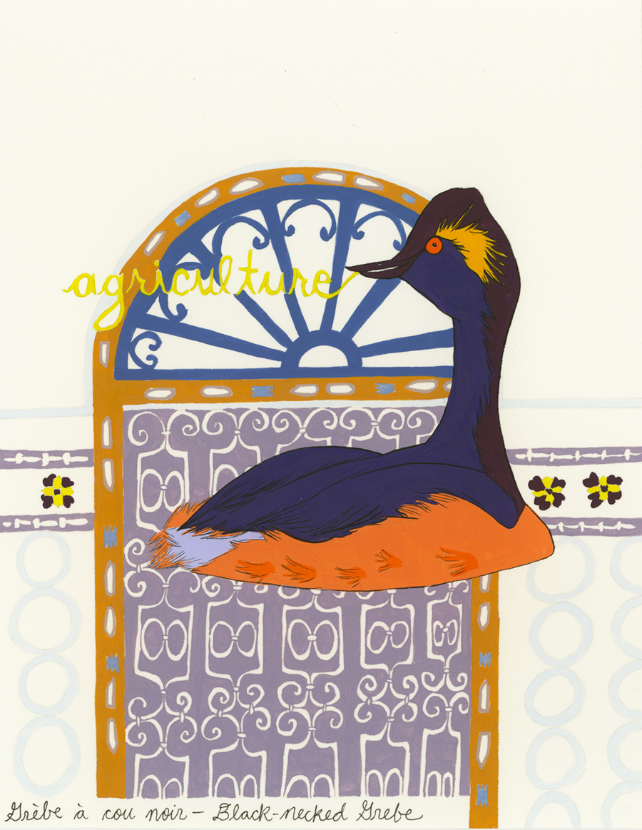 Architecture , from the series of 358  Birds of North Africa Speak French and English Both at Once , 2005, gouache and ink on Arches paper