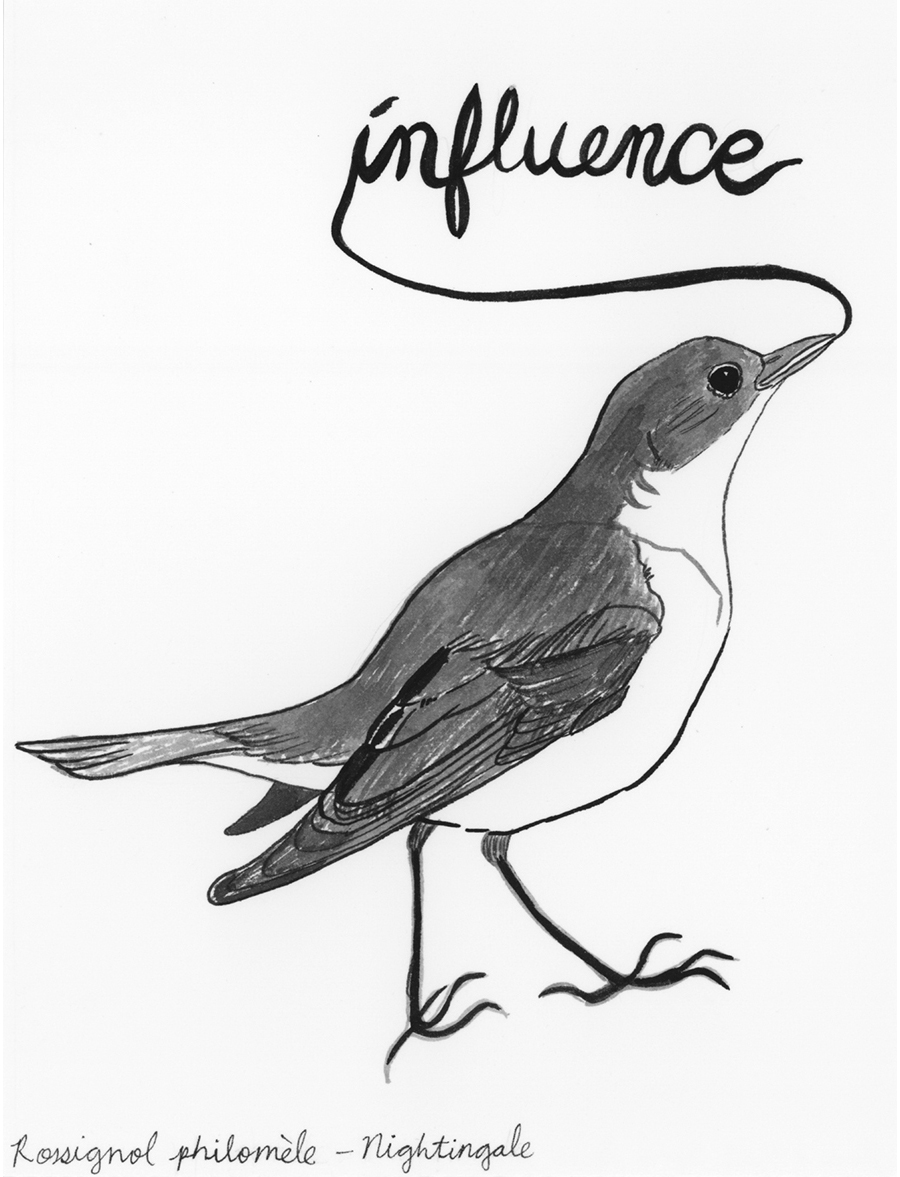 Influence , from the series of 358  Birds of North Africa Speak French and English Both at Once , 2005, ink on Arches paper