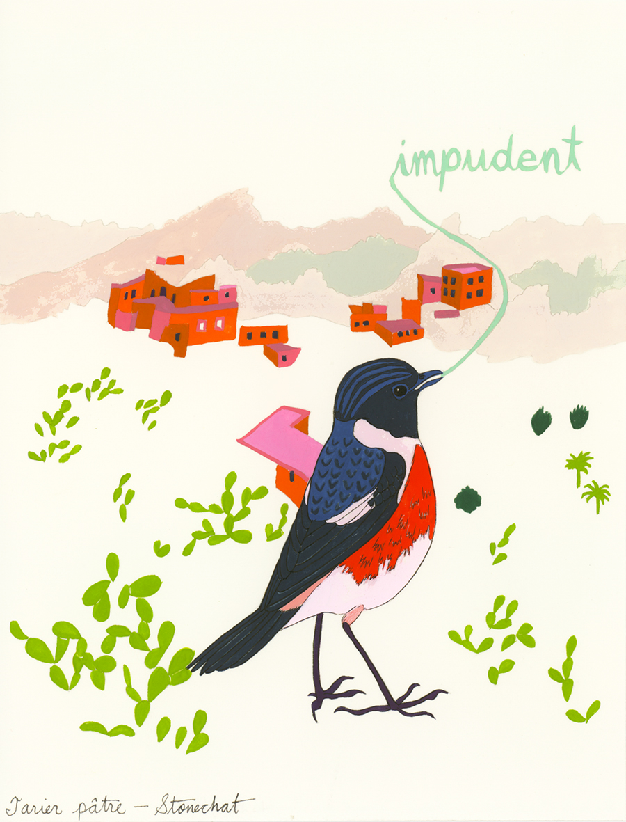 Impudent , from the series of 358  Birds of North Africa Speak French and English Both at Once , 2005, gouache and ink on Arches paper