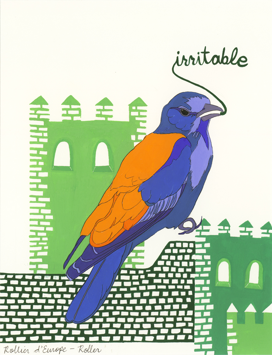 Irritable , from the series of 358  Birds of North Africa Speak French and English Both at Once , 2005, gouache and ink on Arches paper