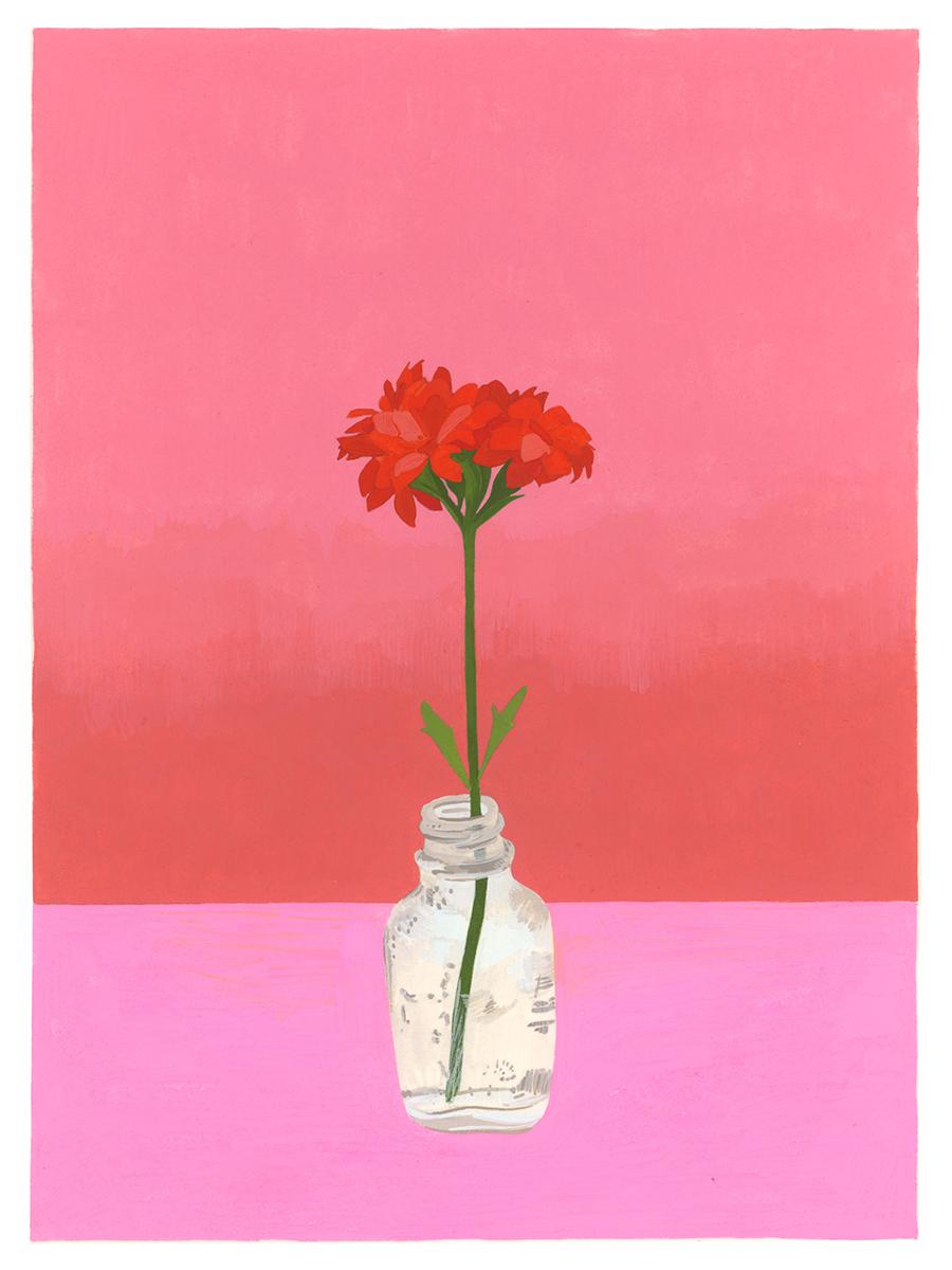 Bloom (Kalanchoe)