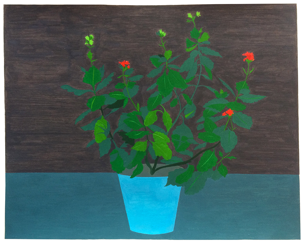 Houseplant (Kalanchoe) , 2017, gouache on Arches paper, 10 x 12 in.