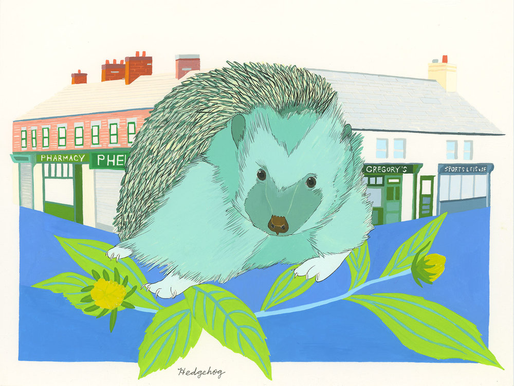 Irish Hedgehog , 2015, gouache and ink on Arches paper, 6 x 8 in.