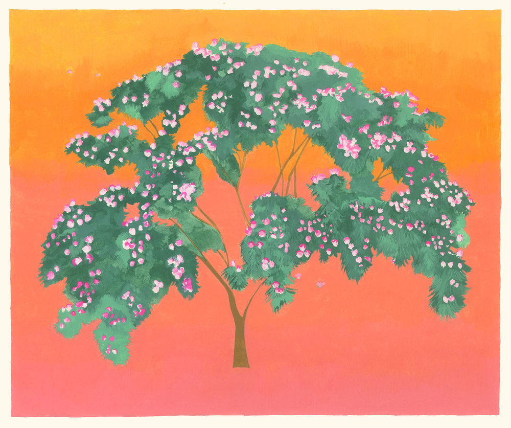 Mimosa , 2017, gouache on Arches paper, 8 x 9 in.