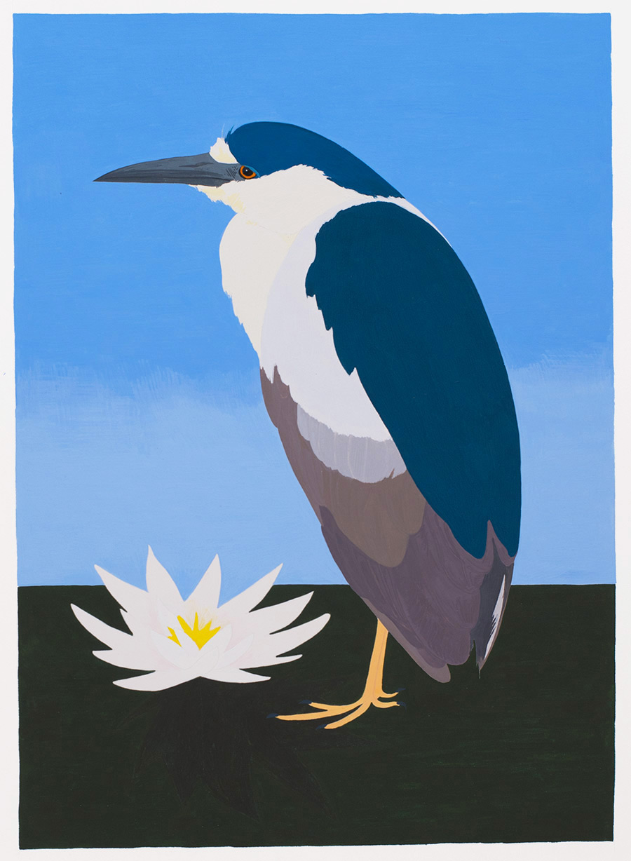 Black-crowned Night Heron , 2017, gouache on Arches paper, 12 1/4 x 9 in.