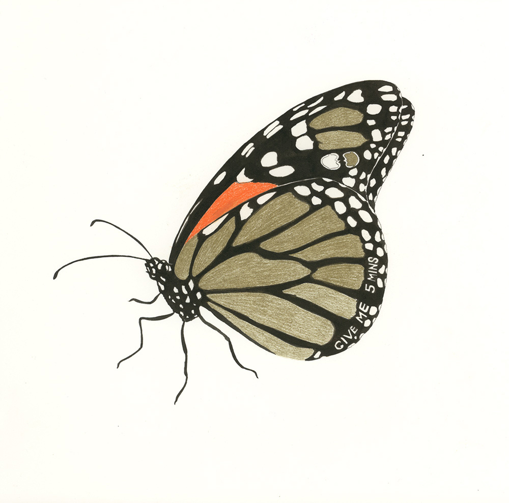 Give me 5 mins  from  Butterfly Messages , 2012, ink and colored pencil on paper