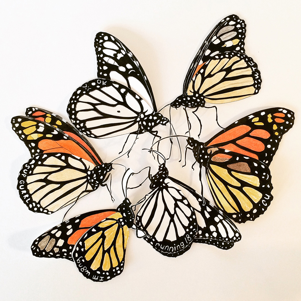 ajp_monarch-huddle.jpg