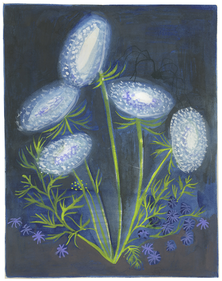 Queen Anne's Lace , 2017, gouache and watercolor on paper, 9 x 7 in.