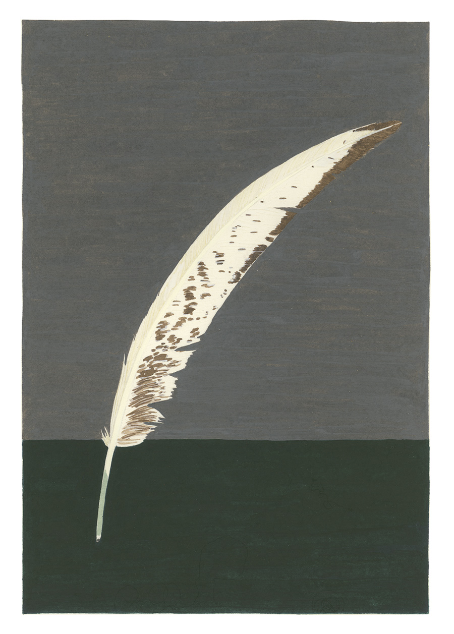 Feather , 2017, gouache on Arches paper, 8 x 5 3/4 in.