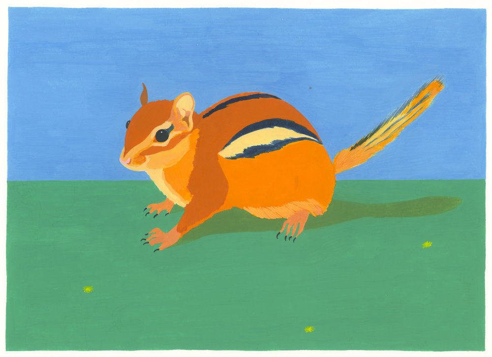 Eastern Chipmunk , 2017, gouache on Arches paper, 6 x 8 in.