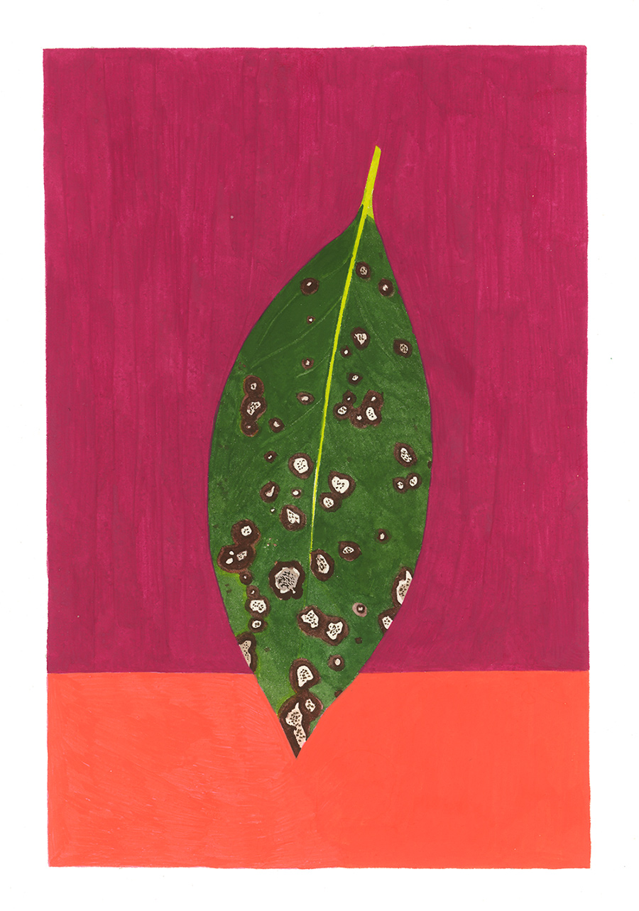 Laurel , 2016, gouache on Arches paper, 8 x 5 in.