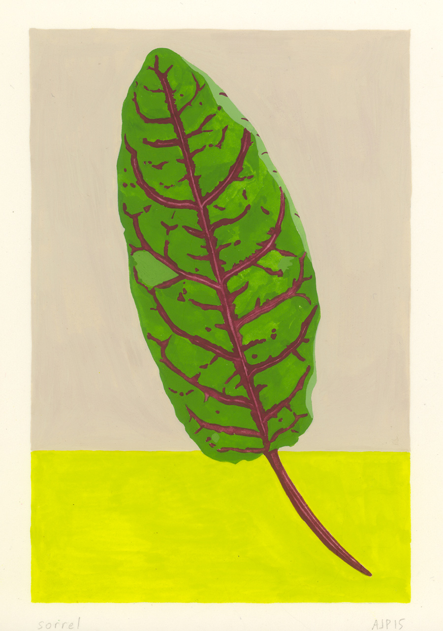 Sorrel , 2015, gouache on paper, 6 x 4 in.