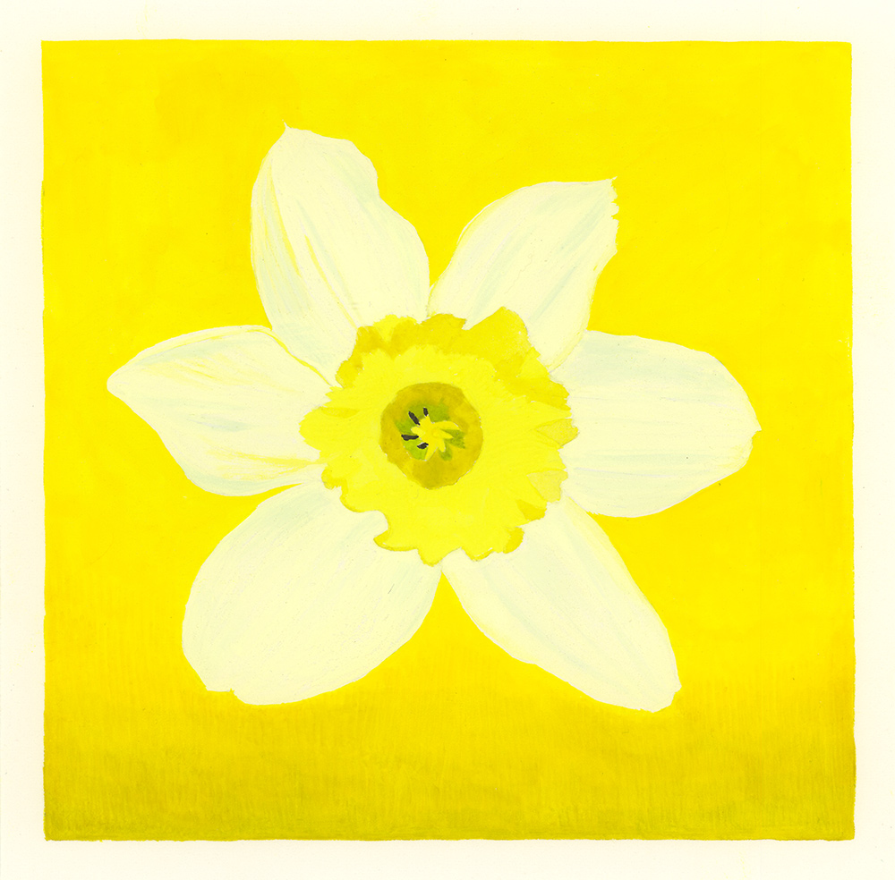 Daffodil , 2016, gouache on Arches paper, 5 x 5 in.