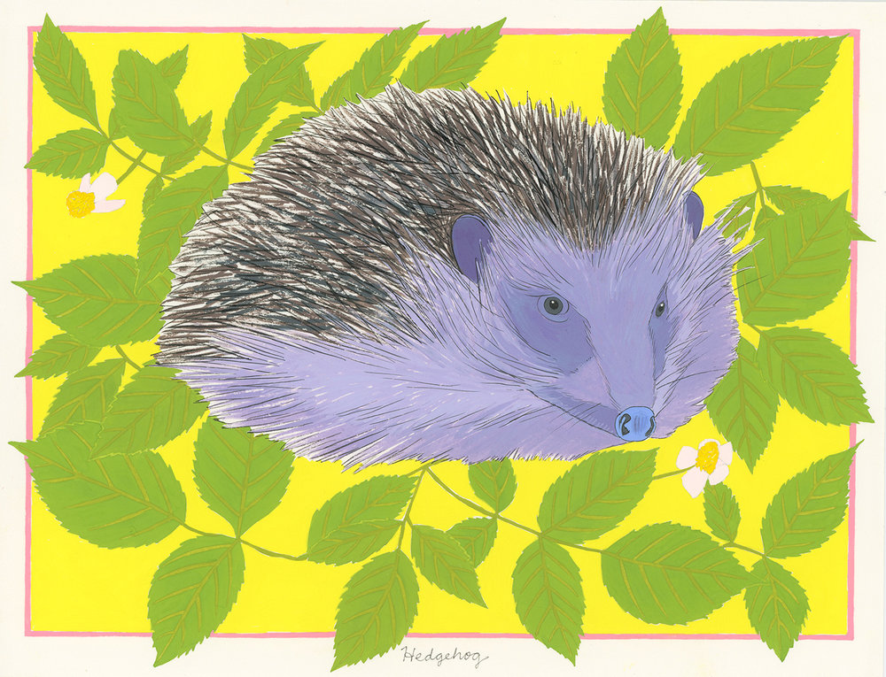 Hedgehog (for the one named Breeze)