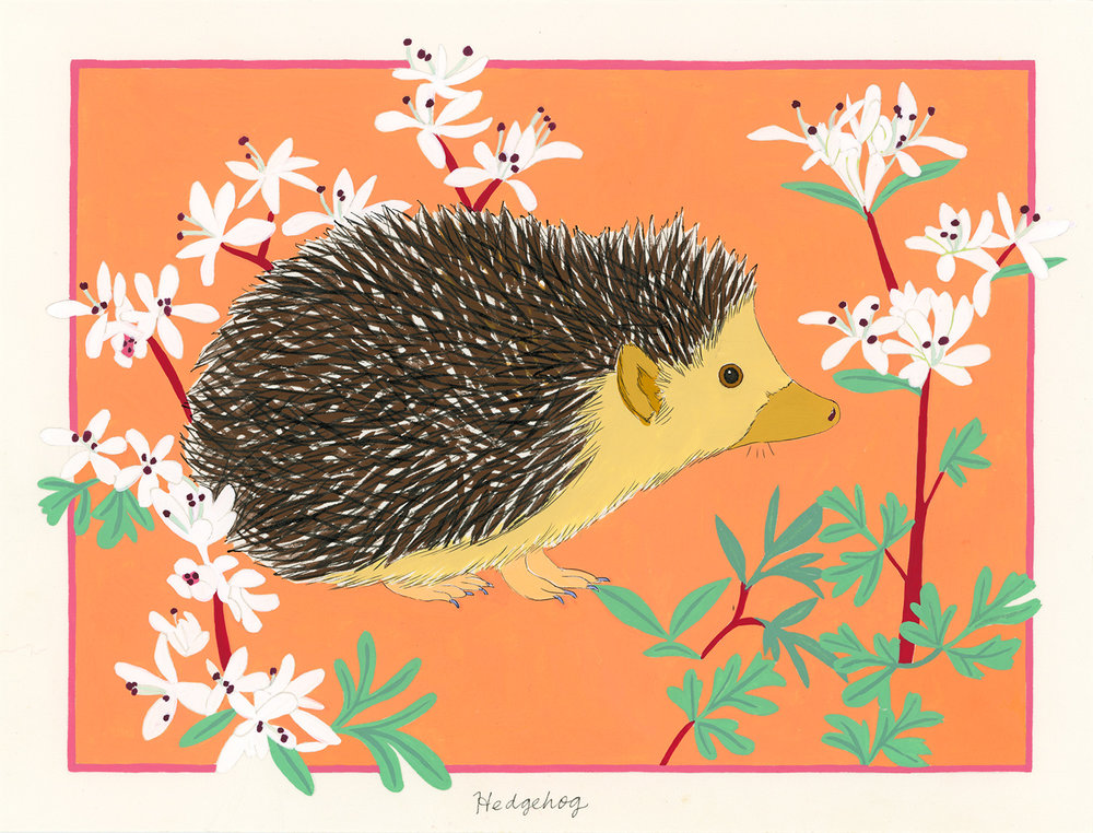 Hedgehog and Harbinger of Spring , 2014, gouache and ink on Arches paper, 6 x 8 in.